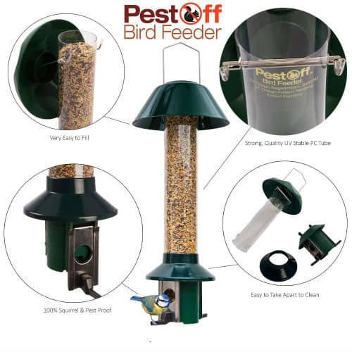Roamwild Pestoff squirrel proof bird feeder Review