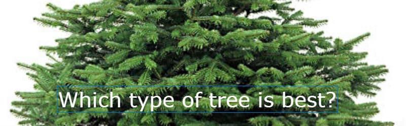 christmas-tree-banner