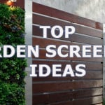 Garden screening ideas from plants to fences, trellis and lattice ideas