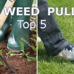 Weed puller reviews