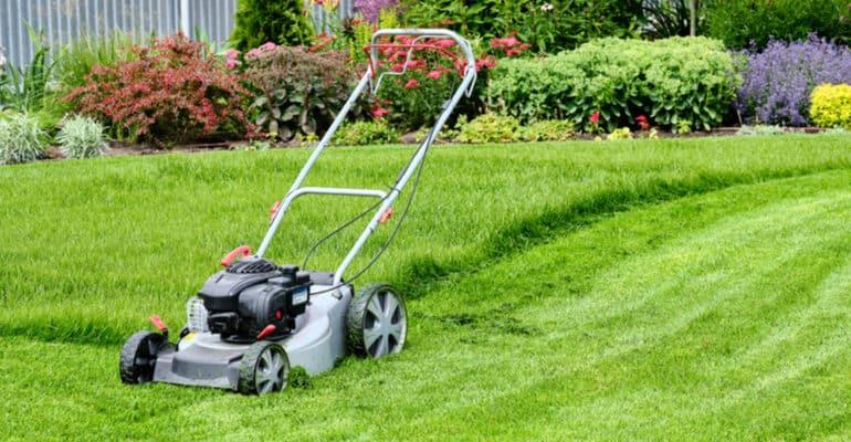 Best Lawn Mower - Lawn Mower Reviews