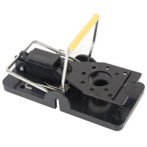 MLG Quick Response Mouse Trap Review