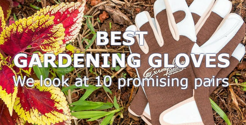Top 10 Best Gardening Gloves 2020 – Comparison & Reviews