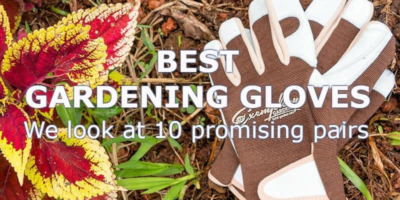 Best gardening gloves -Top 10 Reviews
