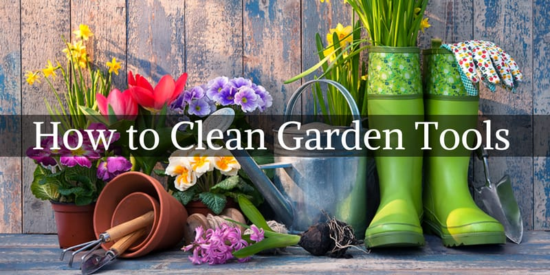 How to Clean Garden Tools - step by step guide