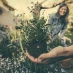 5 ways the garden at your new home will keep you healthy
