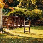 Reasons You Should Get a Leaf Vacuum for Your Garden