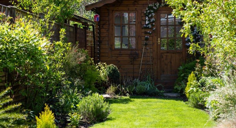 Best Shrubs For Small Garden