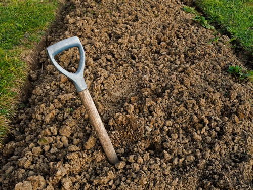 Clay soil is not necessarily bad or nutrient poor but it does tend to be heavier with bad drainage which is usually the real problem. When you dig a hole it can act as a sump and holds water, some plants then essentially drown or rot off because the roots are constantly sat in water. To that end, you can lighten it with some compost to give it better drainage and lighten the compact nature of it.