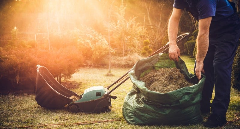 One job that is essential if you want to keep your lawn in tip-top condition is scarifying to remove moss, thatch and weed. learn how to scarify a lawn now.