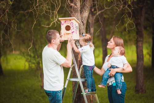 Attaching a nest box to a fence, wall or tree