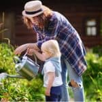Gardening jobs for August