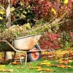 Gardening Jobs For October - Protect tender plants by covering them with fleece or moving them into a greenhouse, collect leaves, divide plants. See our list
