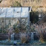 How to heat a greenhouse and everything you need to know