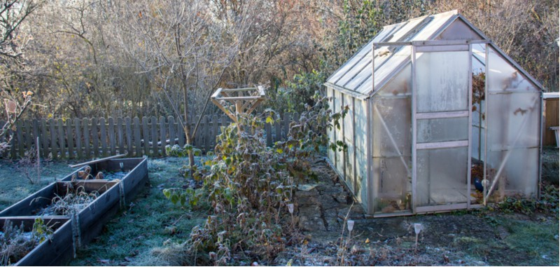 Learn how to heat a greenhouse without electricity or keep it frost free we have some tips from better insulating your greenhouse to other heater alternatives to electric