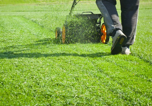 Mow your lawn twice a week in summer and every 2 weeks in spring and autumn. Stop mowing for winter and finish with a shorter final cut