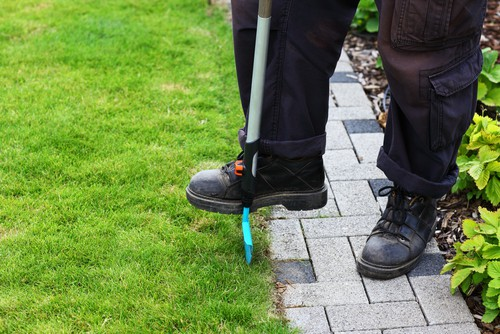 The simple act of edging along the perimeter will go a long way toward achieving the look you want with your garden. With some long-handled shears or lawn edger, you can prevent your grass from growing into your borders, taking over your walkway, or spreading between the cracks of your pavers. This will give a neat and tidy appearance to your garden and will help your lawn to maintain a perimeter.