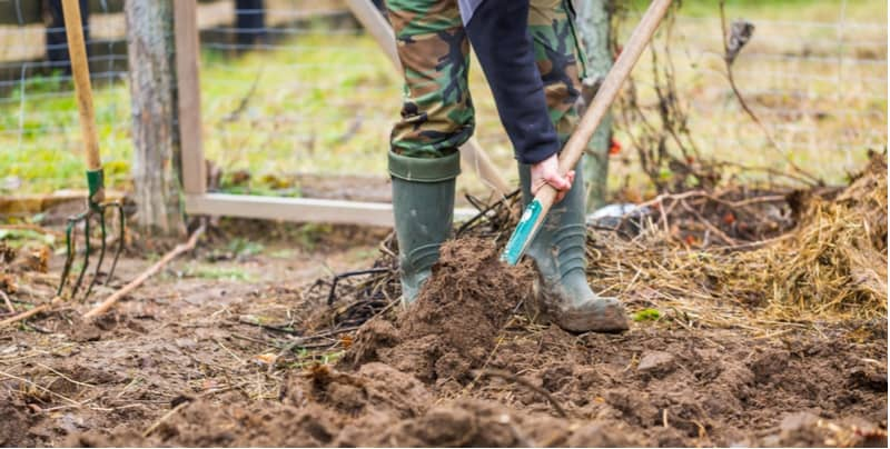 How to improve garden soil to provide the best-growing conditions