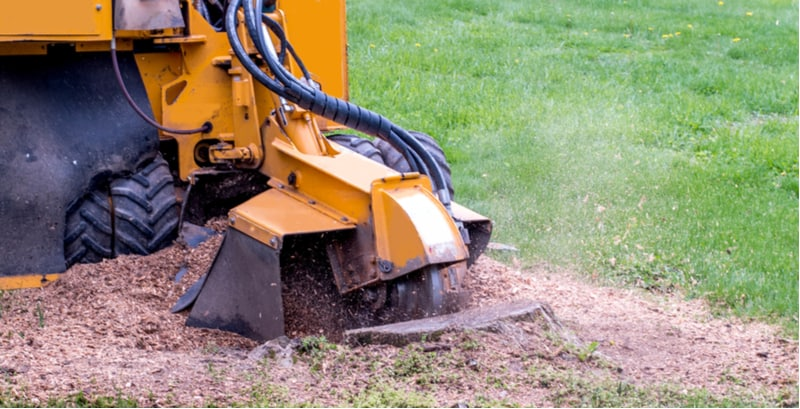 If you have ever had a tree cut down you know the issues with what left, the tree stump. We look at how to remove a tree stump and 5 possible ways to do this.