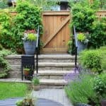 Many homes have small gardens so in this guide we look at some of the best plants for a small urban garden from perennials and shrubs to ferns, bamboo and trees