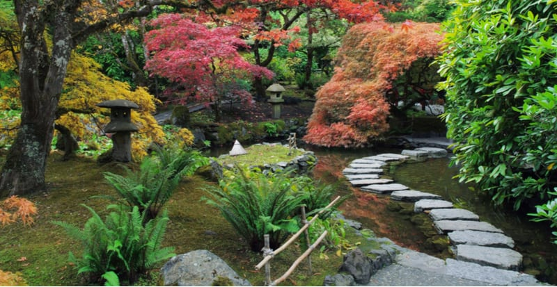We love Japanese gardens and you can build your own and it only takes a small part of your garden. Follow our tips on how to make a Japanese garden.