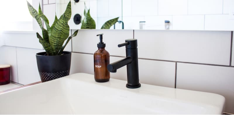 best plants for the bathroom. Why not improve your bathroom vibe with one of the best plants for your bathroom which are perfect for high humidity. See our 20 recommended bathroom plants