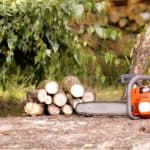 Choosing the best petrol chainsaw can take some careful consideration before choosing the right model. We have reviewed 5 of the models for a range of jobs.