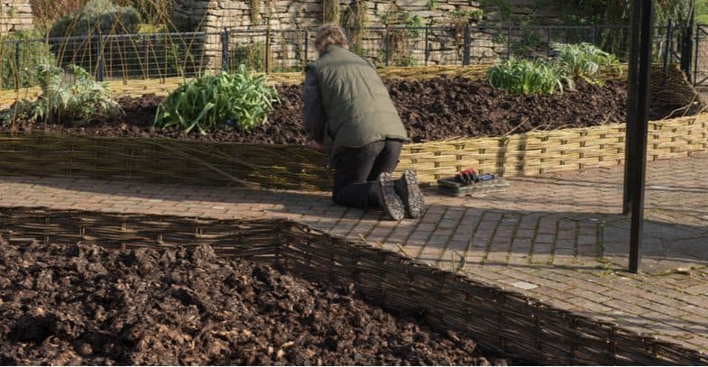 How to make a garden border from planing the design to planting
