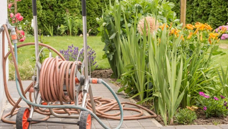 Top 6 Best hose reel carts which make mobility around larger gardens much easier