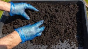 Multipurpose compost comes in many grades of quality and many are not worth using, we recommend 5 of the best multi-purpose compost with added nutrients.