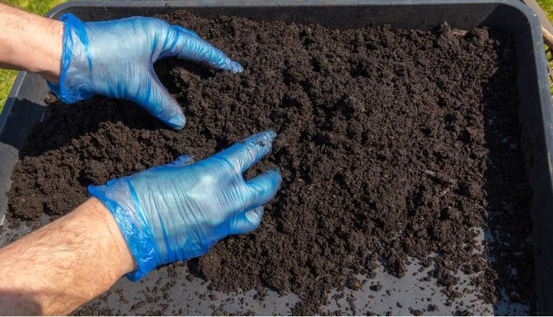 Best Multi-Purpose Compost Review