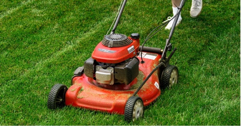 Most mowers can mulch clipping but you can get dedicated mulching mowers if you only want to mulch clipping. See the best mulching mowers now and buyer guide.