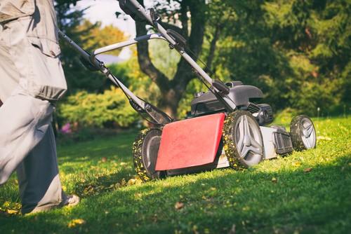 Choosing a mulching mower