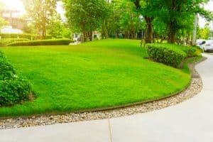 Lawn edging buyers guide