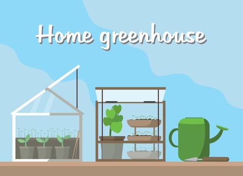 Mini greenhouse guide