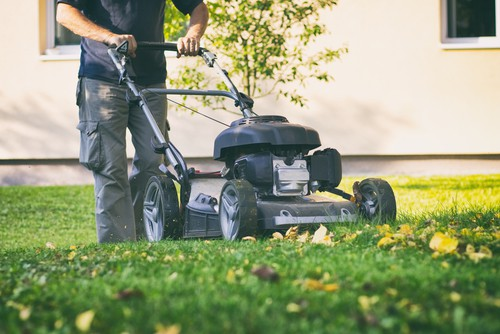 Professional using dedicated mulching mower