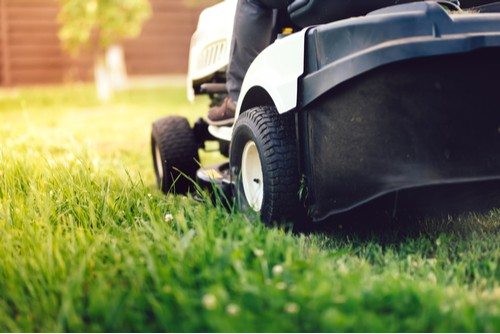 Ride on lawn mower collecting grass