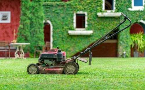 Tips for mulching