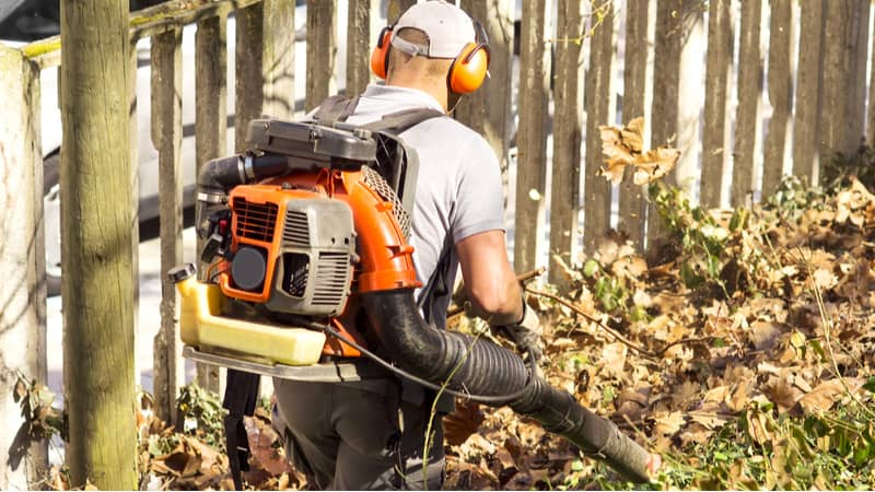 We look at some top-rated backpack leaf blowers including petrol and even a 56v cordless model. Read our reviews and compare 6 of the best backpack leaf blowers