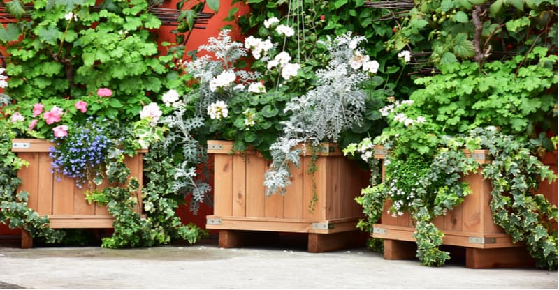 Best wooden planter ideas