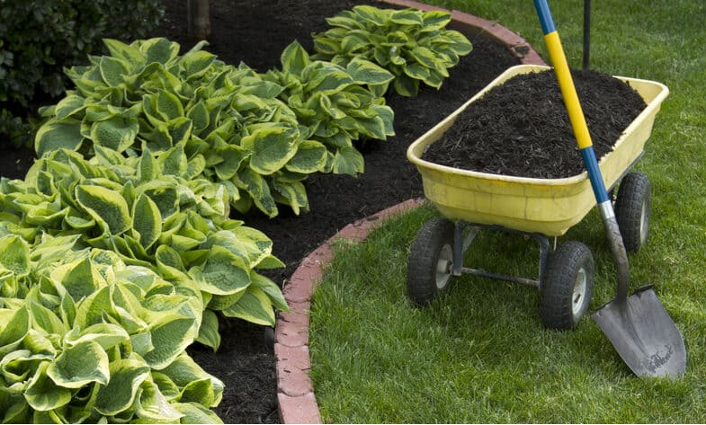 Top 5 best garden shovels for different tasks from moving bulky materials to digging trenches