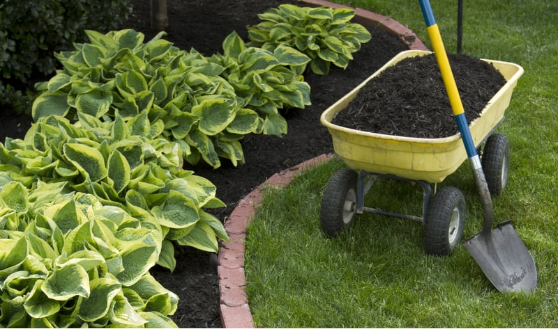 Not all garden shovels are created equal and with so many different designs which one do, you need. Read our reviews to help you decide which is best for you.
