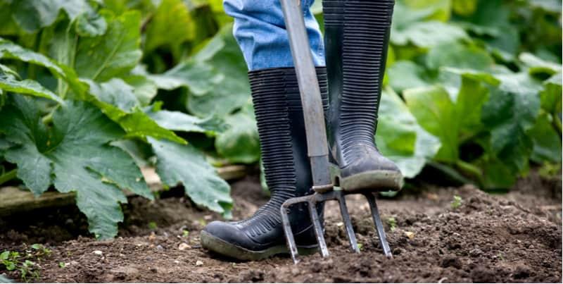 Best wellies for gardening
