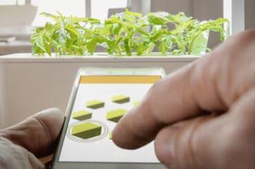 Gorwing herns and vegetables just hot easier and smarter. Plus they can be grown indoors too.