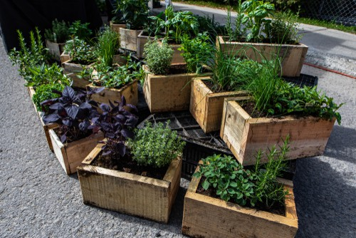 A selection of the best herb planters