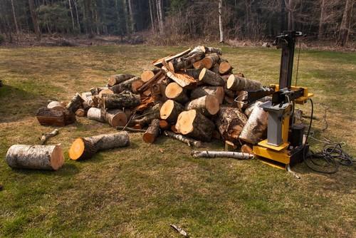 Types of wood that log splitters can split