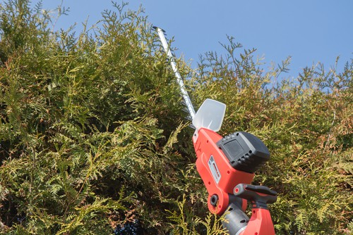 Long reach cordless hedge trimmer being tested for performance