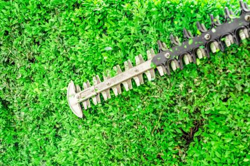 Hedge trimmer blade close up