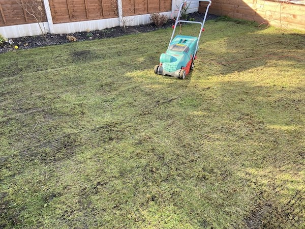 Bosch 1100 AVR Verticutter that is on lawn that has just been scarified.