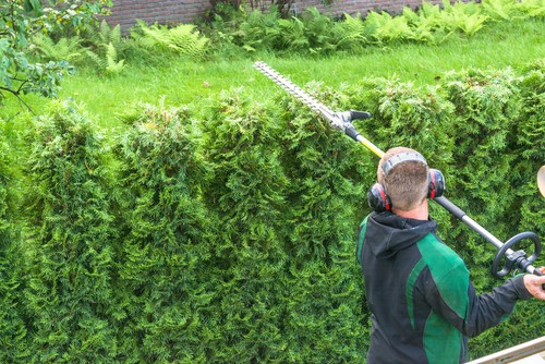 Telescopic hedge trimmer in testing
